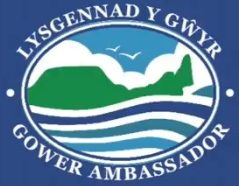 Gower Ambassadors